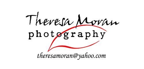 Theresa-Moran-Revised-Logo